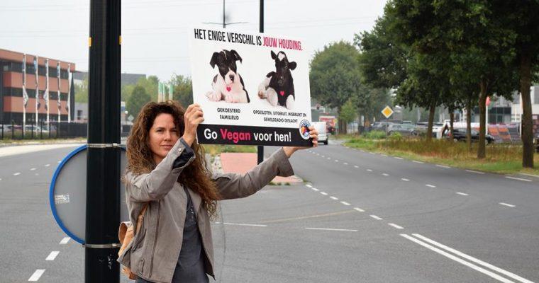 Mijn verhaal: hoe ik vegan én activist werd