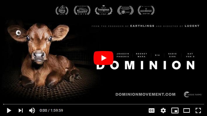 Dominion You Tube