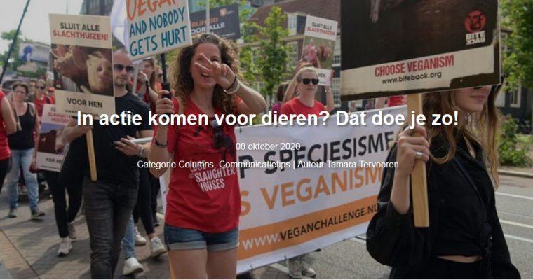 Seeds blog #23 – In actie komen voor dieren? Dat doe je zo!
